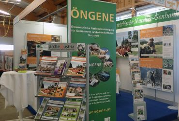Info-Stand; Halle 13
